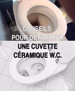 Conseils pour d tartrer une cuvette c ramique w c - Detartrer cuvette wc ...